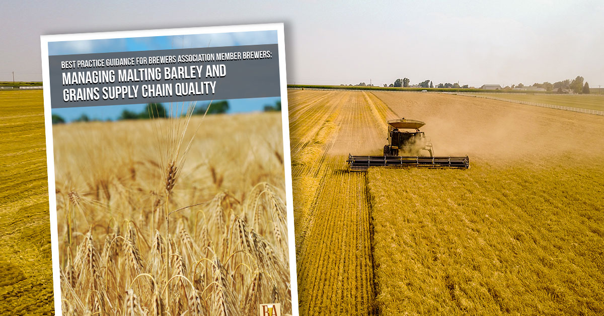 malt supply chain educational publication