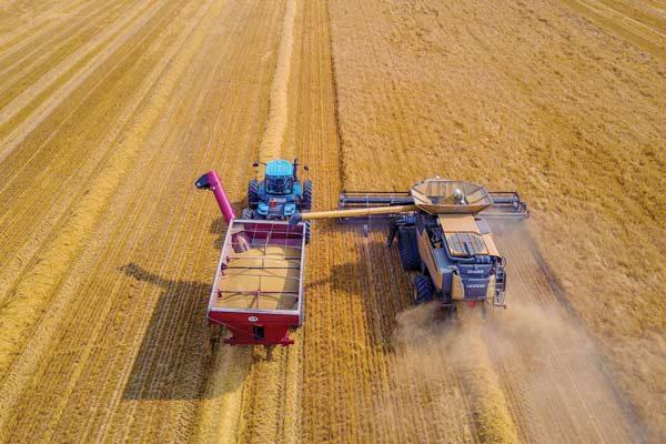 North America Barley