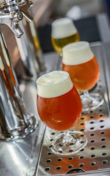 Draught Quality Ambassador Industry Update