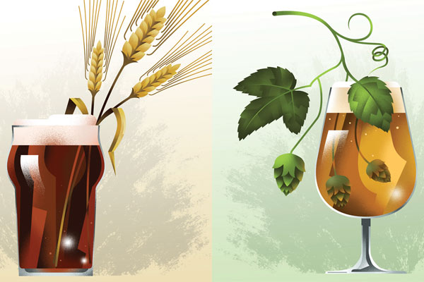 The New Brewer Raw Materials Reports