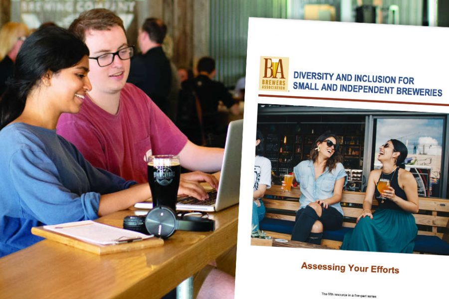 diversity assessing your efforts