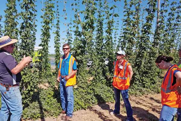 HGA Launches Hops Best Practices Resources