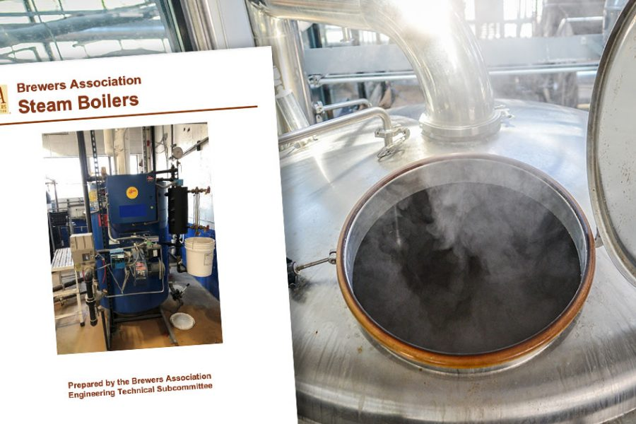 Steam Boilers white paper