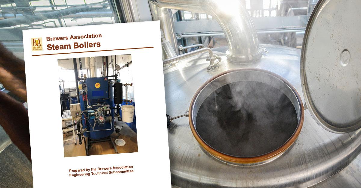 Steam Boilers white paper